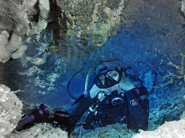 Recreational Diving Tips In Florida